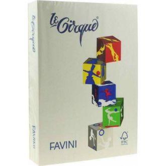 Χαρτόνι Favini le Cirque A4 160gr Γκρι (109)